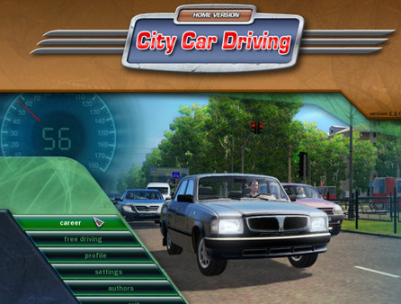 City Car Driving 1.3